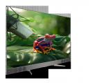 Смарт - Телевизор TCL U55C7006