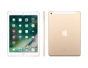 "Apple iPad 9.7"" (2017) 32 Gb, 4G , Gold"