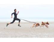 Занятие спортом с животными