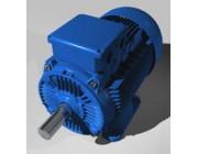 Мотор электрический 992